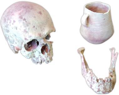 Fundstücke steinzeitliche Bestattung in Brandenburg  / Polymergipsdruck / Polymergips